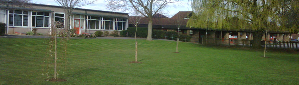 Schools grass cutting and grass mowing company
